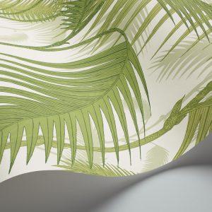 Cole and Son wallpaper Palm Jungle 1001