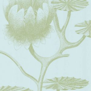 Cole and Son wallpaper Lily 3112