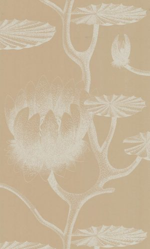 Cole and Son wallpaper Lily 3113