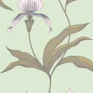 Cole and Son wallpaper Orchid 4028