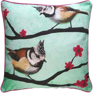 Myrte cushion Crested Titmouse