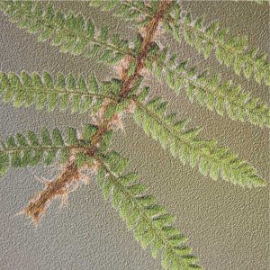 EST-1966 wallpaper NO-2 Green Ferns