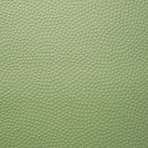 Jean Paul Gaultier wallpaper Embosse green