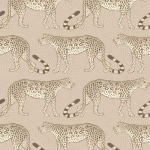 Cole and Son wallpaper Leopard Walk 2012