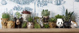 Quail Ceramics egg cups Wildlife - set of 3